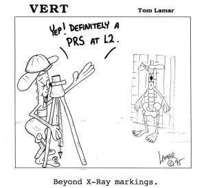 vert-32